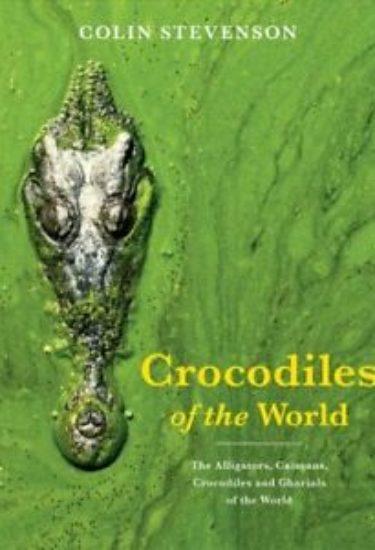 crocs_world