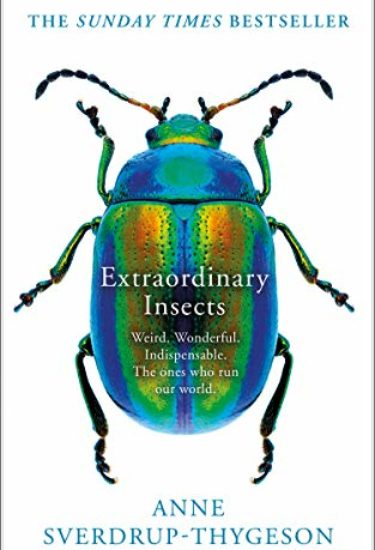 extraordinary_insects